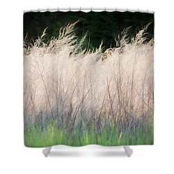 Aplume 2 - Shower Curtain