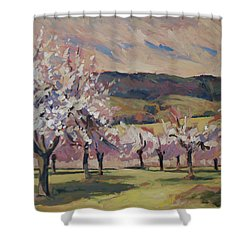 Apple Blossom Geuldal Shower Curtain