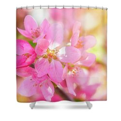Apple Blossoms Cheerful Glow Shower Curtain