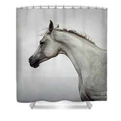 Shower Curtain featuring the photograph Arabian Horse Portrait by Dimitar Hristov
