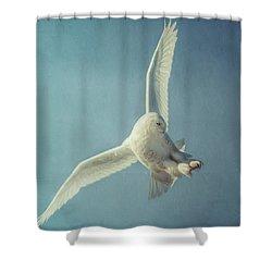 Arctic Angel Shower Curtain