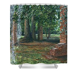 Ardoyne Ruins Near The Mansion, Houma, Louisiana Shower Curtain