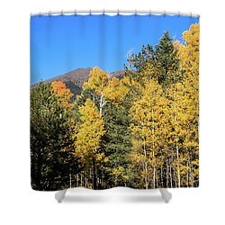 Arizona Aspens With Mountains Shower Curtain