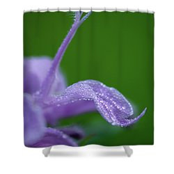 Shower Curtain featuring the photograph Artistry In Nature by Dale Kincaid