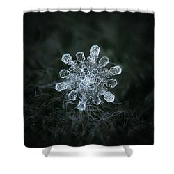 Shower Curtain featuring the photograph Real Snowflake - 04-feb-2018 - 1 by Alexey Kljatov