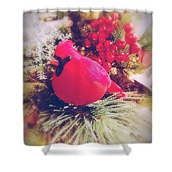 Shower Curtain featuring the photograph Blessed Yule by Rachel Hannah