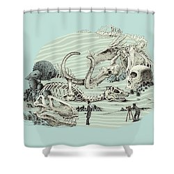 The Lost Beach Shower Curtain