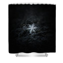 Shower Curtain featuring the photograph Real Snowflake - 18-dec-2018 - 3 by Alexey Kljatov
