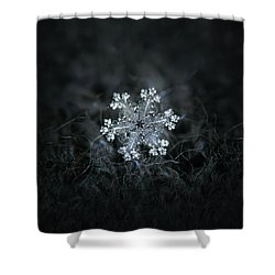 Shower Curtain featuring the photograph Real Snowflake - 26-dec-2018 - 1 by Alexey Kljatov
