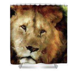 Aslan Shower Curtain