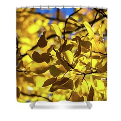 Aspens Up Close Shower Curtain