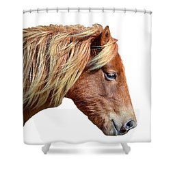 Shower Curtain featuring the photograph Assateague Pony Sarah's Sweet On White by Bill Swartwout Fine Art Photography