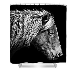 Shower Curtain featuring the photograph Assateague Pony Sarah's Sweet Tea B And W by Bill Swartwout Fine Art Photography