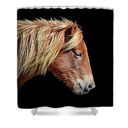 Shower Curtain featuring the photograph Assateague Pony Sarah's Sweet Tea On Black Square by Bill Swartwout Fine Art Photography