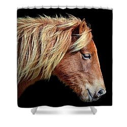 Shower Curtain featuring the photograph Assateague Pony Sarah's Sweet Tea Portrait On Black by Bill Swartwout Fine Art Photography