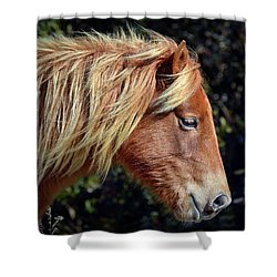 Shower Curtain featuring the photograph Assateague Pony Sarah's Sweet Tea Profile by Bill Swartwout Fine Art Photography