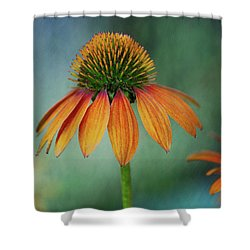 Shower Curtain featuring the photograph Attracting Attention by Dale Kincaid