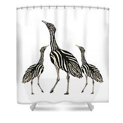 Australian Bustard Zebra 3 Shower Curtain