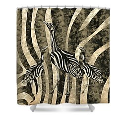 Australian Bustard Zebra 4 Shower Curtain