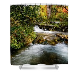 Shower Curtain featuring the photograph Autumn Along The Provo Deer Creek by TL Mair