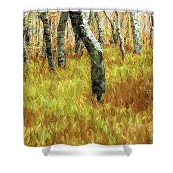 Autumn At Craggy Gardens Ap Shower Curtain