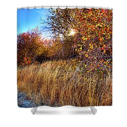Shower Curtain featuring the photograph Autumn At Magpie Forest by David Patterson
