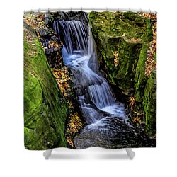 Autumn At Pewits Nest Shower Curtain