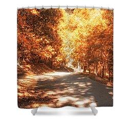 Autumn Forest Shower Curtain