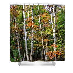 Autumn Grove, Vertical Shower Curtain
