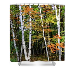 Autumn Grove, Wisconsin Shower Curtain