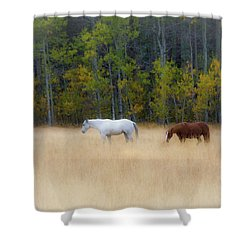 Autumn Horse Meadow Shower Curtain