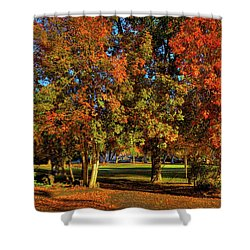 Shower Curtain featuring the photograph Autumn In Reaney Park by David Patterson