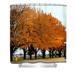 Autumn Leaves In Menominee Michigan Shower Curtain