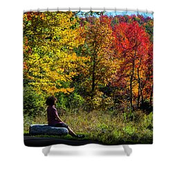 Autumn Leaves In The Catskill Mountains Shower Curtain