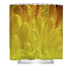 Autumn Macro-1 Shower Curtain