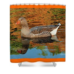 Shower Curtain featuring the photograph Autumn Swim by Debbie Stahre