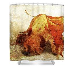 Shower Curtain featuring the photograph Autumn Texture by Randi Grace Nilsberg