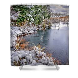 Autumn To Winter Shower Curtain