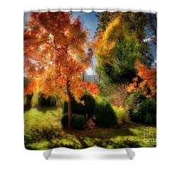 Shower Curtain featuring the photograph Autumnal Glory by Edmund Nagele