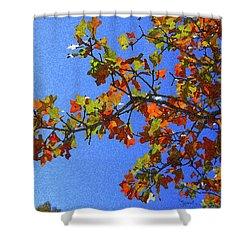 Autumn's Colors Shower Curtain