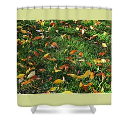 Autumn's Confetti Shower Curtain