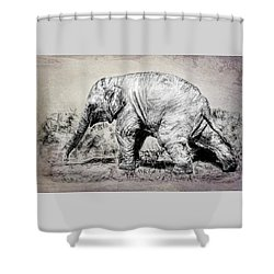 Baby Elephant Walk Shower Curtain