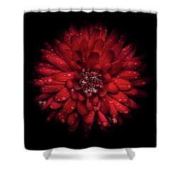 Backyard Flowers 45 Color Version Shower Curtain
