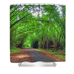 Bamboo Cathedral 2 Shower Curtain