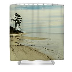 Beach And Trees Shower Curtain