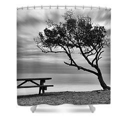 Beach Tree Shower Curtain