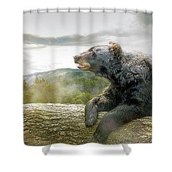 Bear In Tree At Smoky Mountains Park Shower Curtain