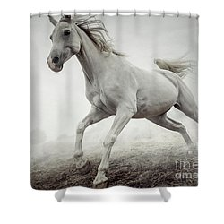 Shower Curtain featuring the photograph Beautiful White Horse Running In Mist by Dimitar Hristov