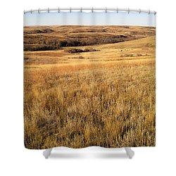 Beauty On The High Plains Shower Curtain
