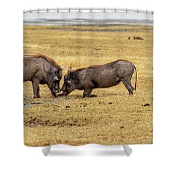 Shower Curtain featuring the photograph Beauty On The Hoof, The Warthog by Kay Brewer